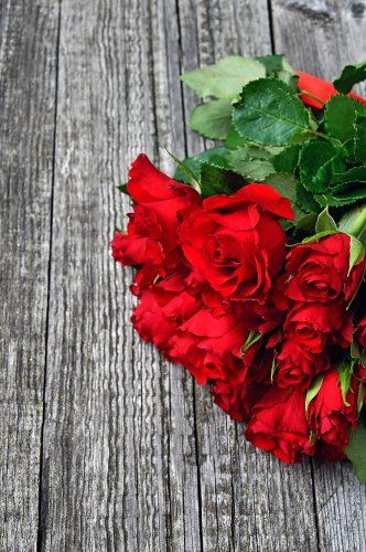 פרחים וורדים